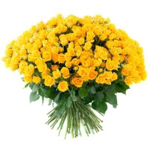 Розы Кустовые желтые
